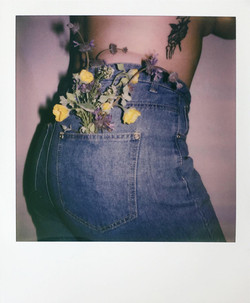 "Pocket Full of ""Daisies"""