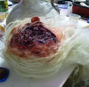 Fx Lab Work (Special Makeup Effects)