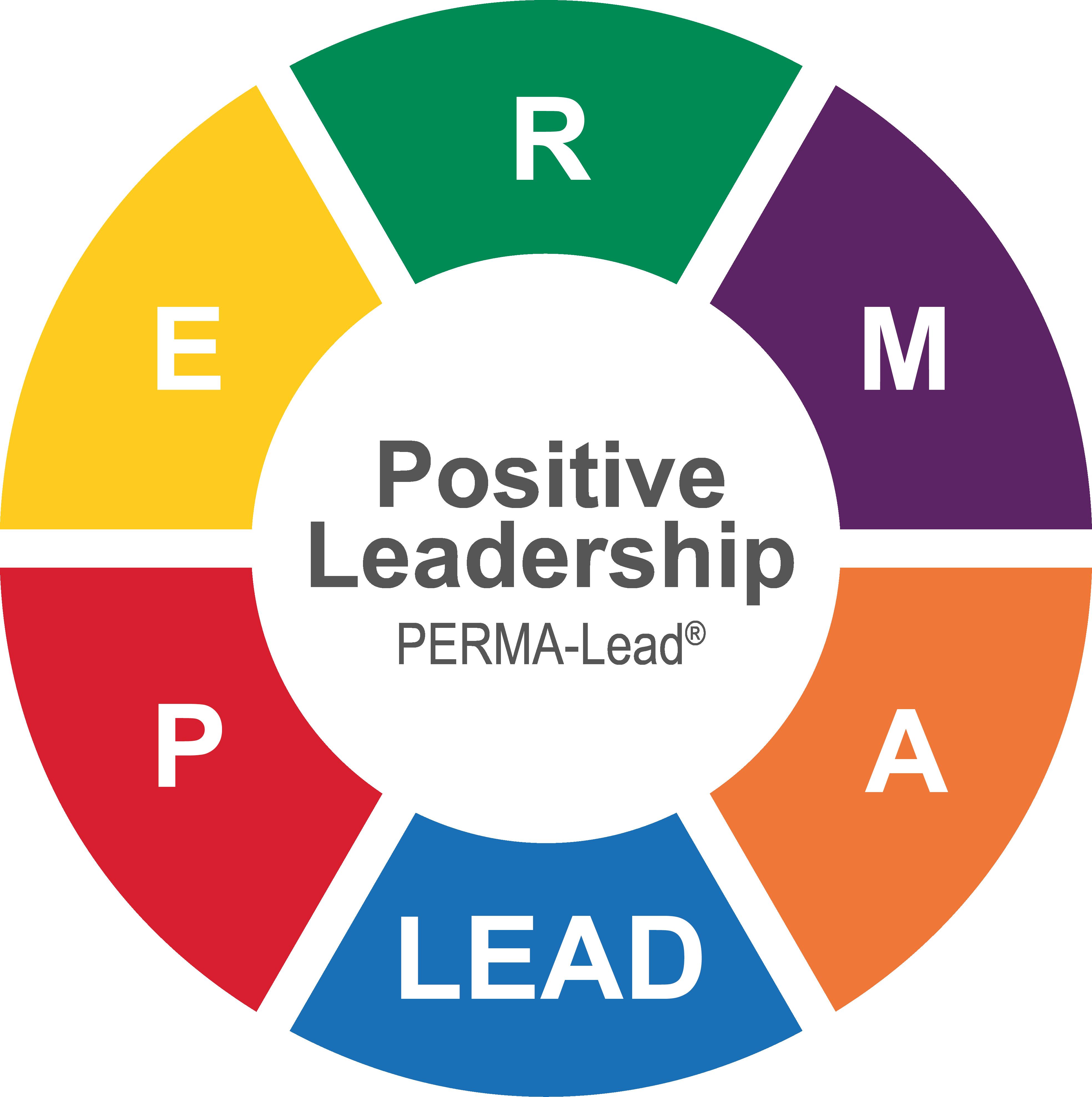 Positive Leadership Workshop