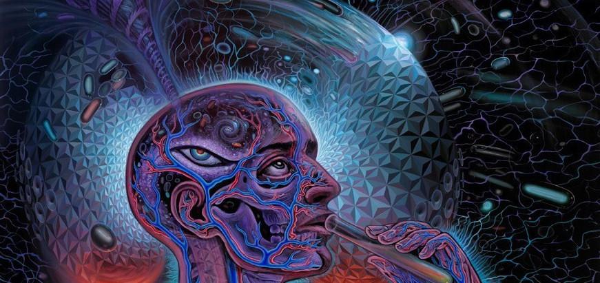 Psychedelics - lasst uns über bewusstseinserweiternde Drogen sprechen