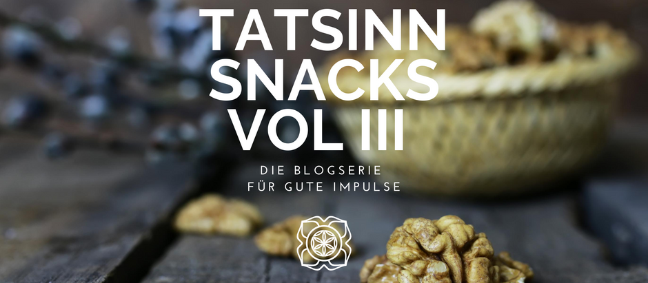 TATSINN Snacks VOL III: Earthing, Dating mit Autismus, Roger Willemsen & Betreutes Fühlen