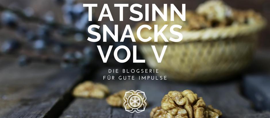 TATSINN Snacks VOL V: Musik, Beziehungen, Narzissmus, DMT