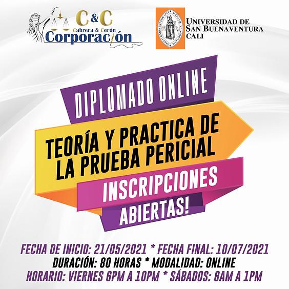 """Diplomado Online """"Teoría y Práctica de la Prueba Pericial"""""""