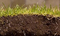 soil-news-967x580.jpg