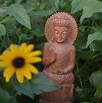 Meditation with Georgia Ambarian