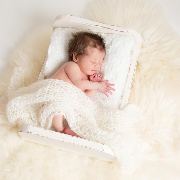 Newborn Photography Brintree