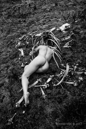 flesh and bone 06 WATERMARK.jpg