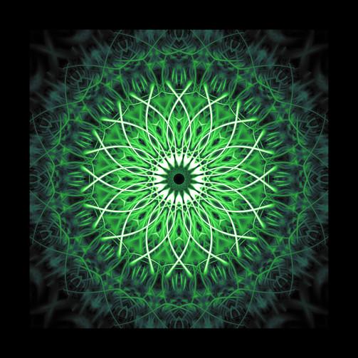 pine star 3 web.jpg