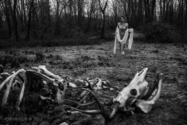 flesh and bone 01 WATERMARK.jpg