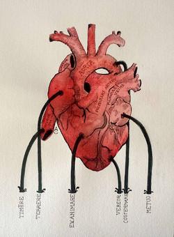 I mali del cuore