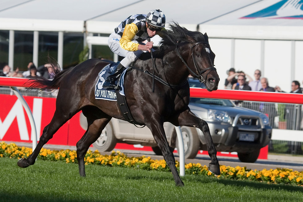 So You Think. 2010 Cox Plate.jpg