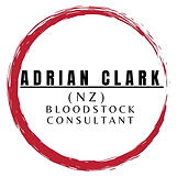 New Adrian Clark logo. 07 July 2021.jpg