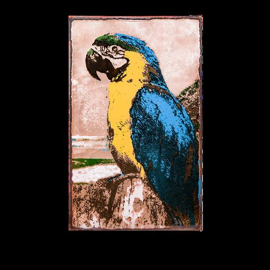 218 - Parrot