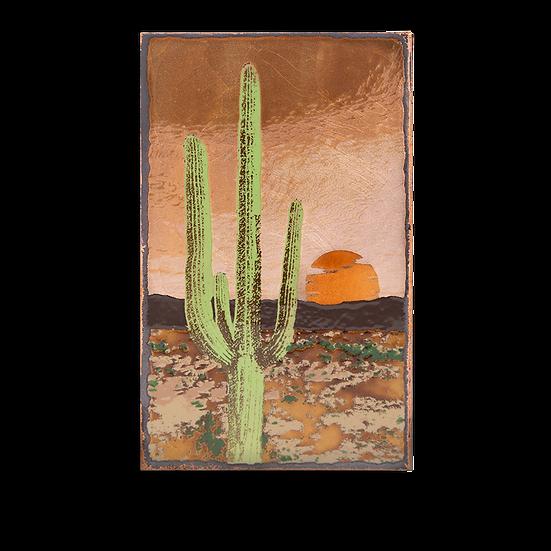 E-007 - Saguaro