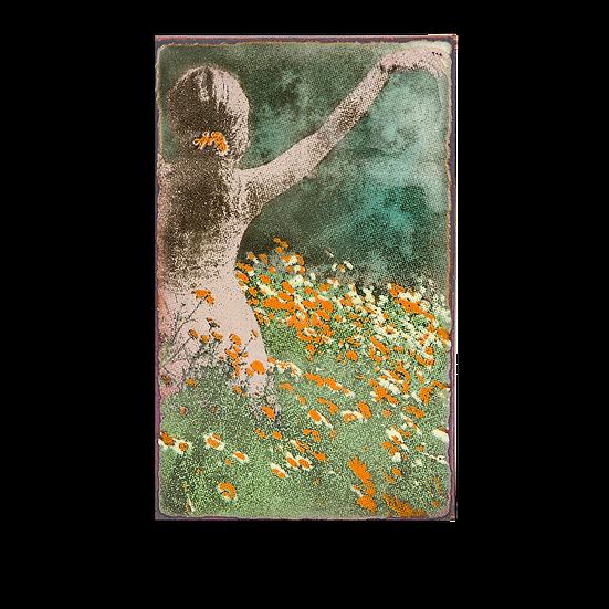 182 - Blossom