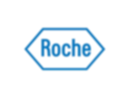 Roche Patna.png