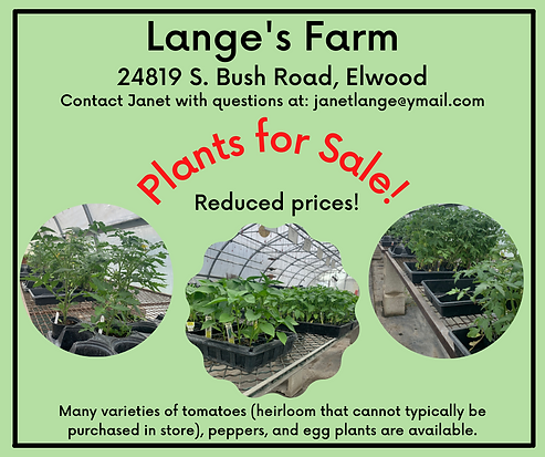 Plants for Sale!.png