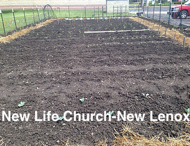 New Life Church New Lenox.jpg