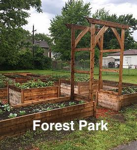 Forest Park.jpg