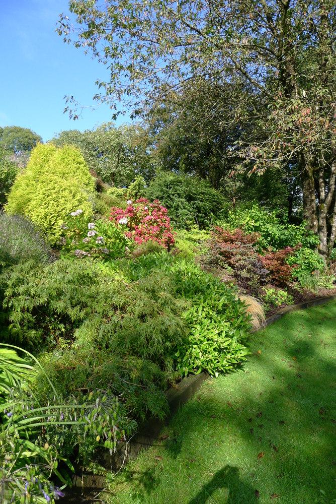 03 garden in Cheddar sunny bank
