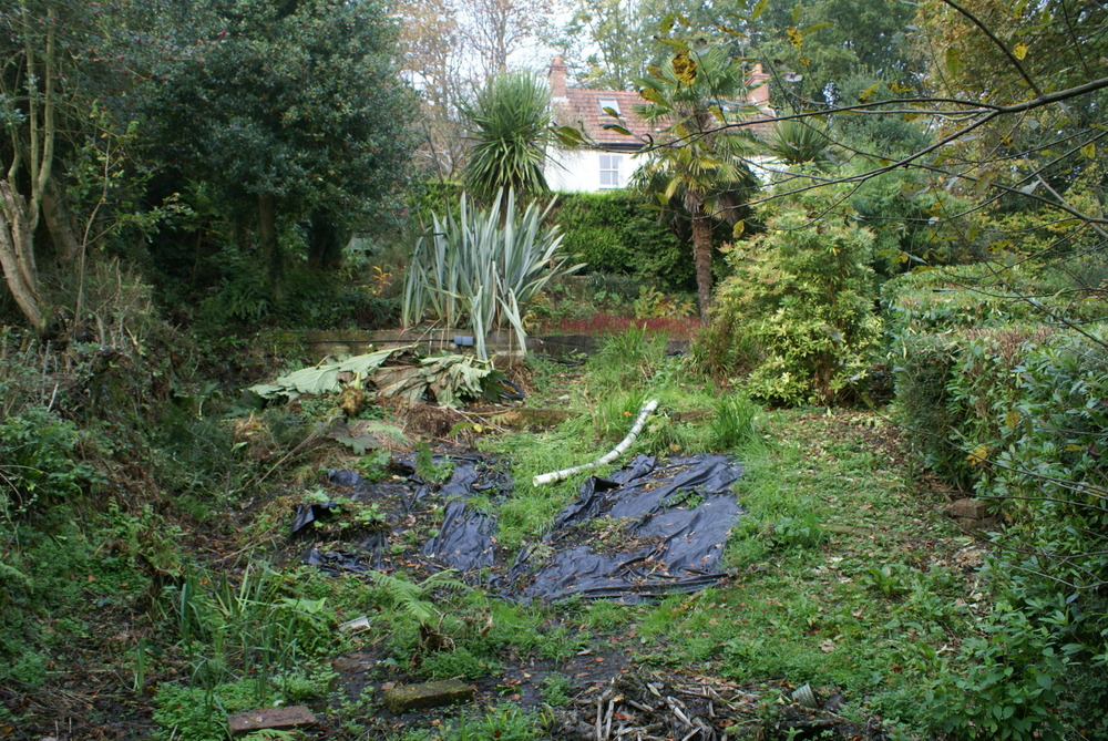 09 steeply sloping garden in Uplyme before project began  2010
