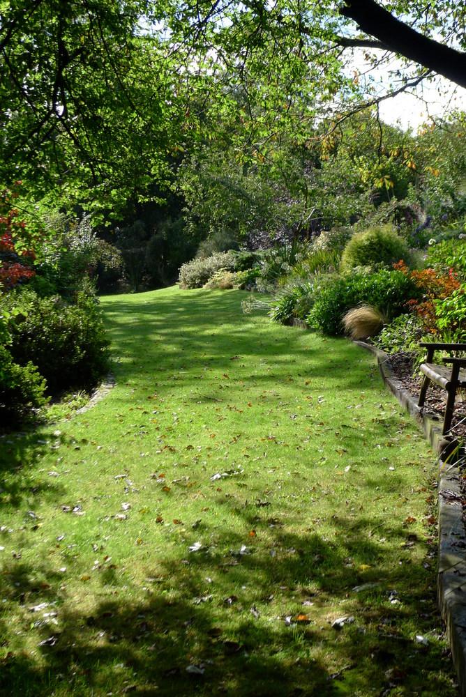 02 garden in Cheddar shady walk