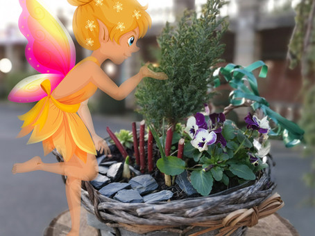 Children's 'Make a Fairy Garden' Workshops - Sat 8th & Sun 9th Feb 2020