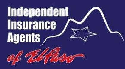 iiaep logo.jpg