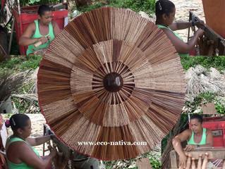Sustentabilidade com fibra de açaí