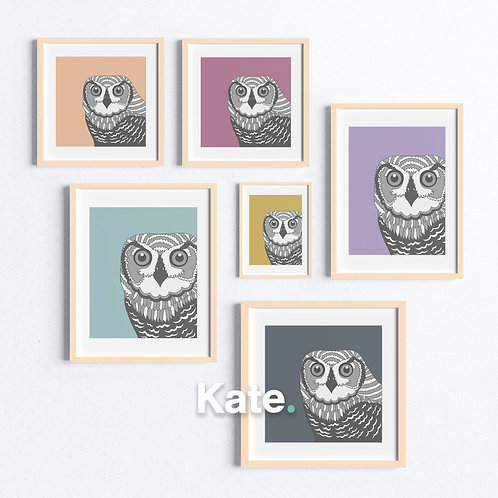 Owl print with colourful background