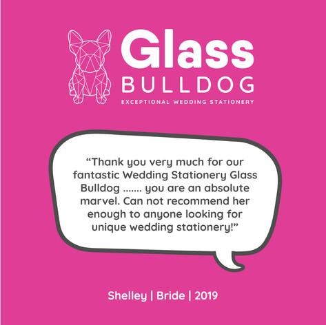 Glass Bulldog review Shelley 2019