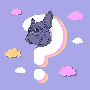 FAQ-dog.jpg