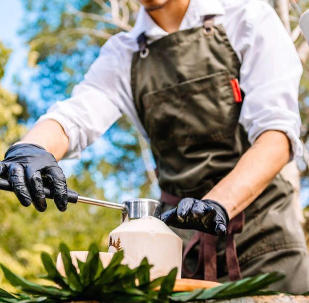 Professional Coconut Service