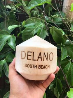 Custom Logo Coconut