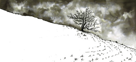 Midwinter Tree