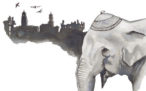 Elephant in Dresden