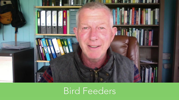 Some tips about what to put in your bird feeders by Stephen Moss