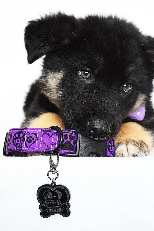 Obojok - purple