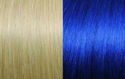 20/Blue