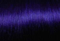 New Purple/64