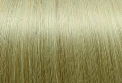 1002.Very Light Ash-Blond