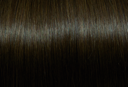 8.Natural Dark Blond