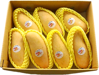 mango-01.png