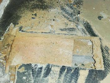Floor-Flex-Platten entfernen