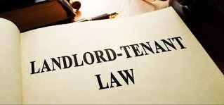 God the Landlord & the tenant