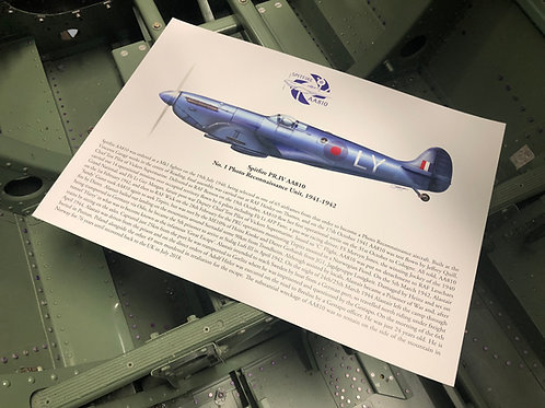 AA810 Profile Print