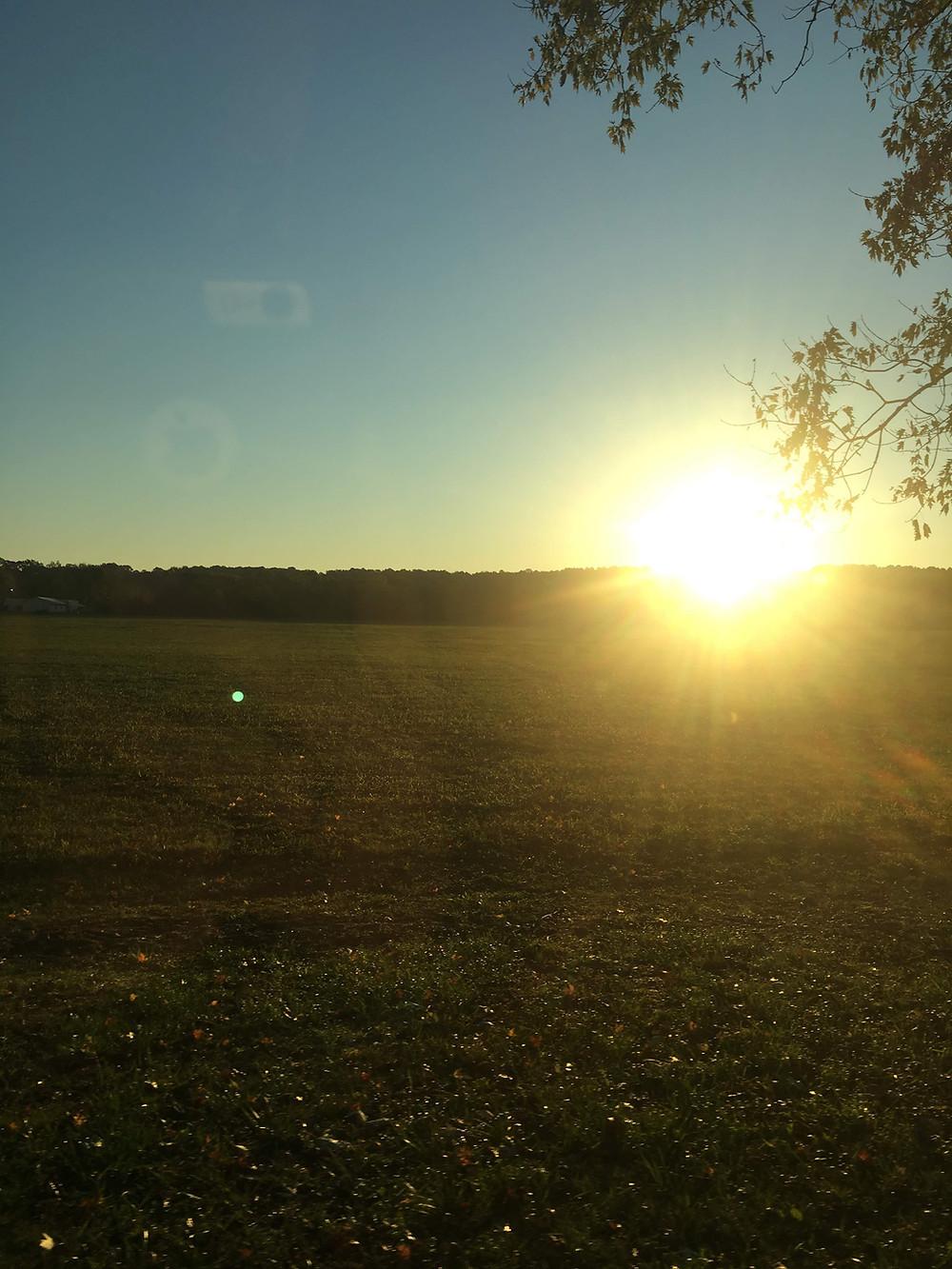 Sun cresting horizen