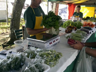Conheça a Feira da Agricultura Familiar da Lapa