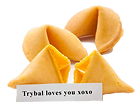 Fortune Cookies 2.png