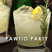 Pawtio Party.jpg